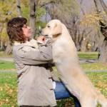 Warum Hunde Menschen anspringen